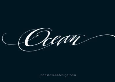Ocean-fin-new